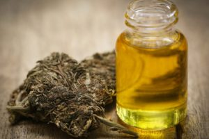 What is Hash Oil And How To Make It?